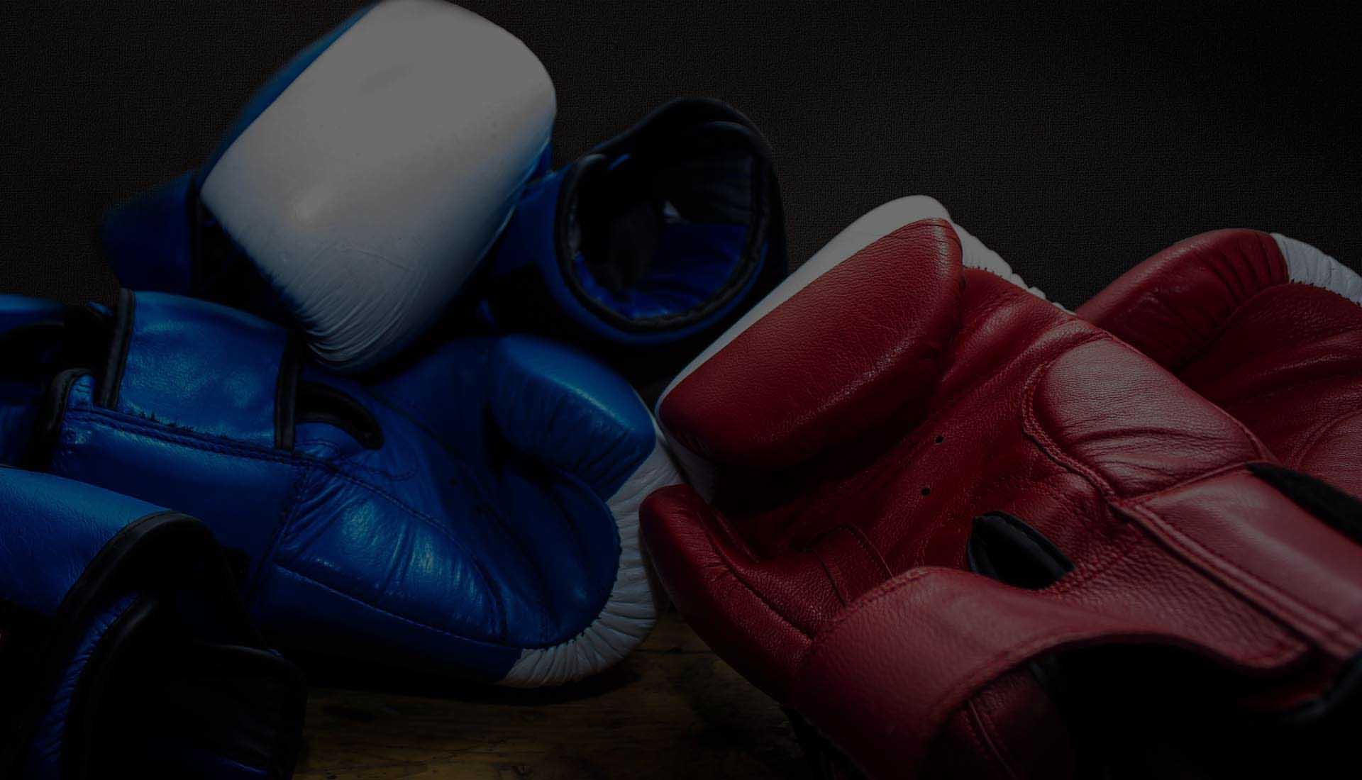 Comité d'Ile de France de Boxe